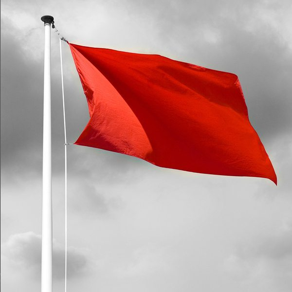 Red Flags: Keeping an Eye on Behavior & Development